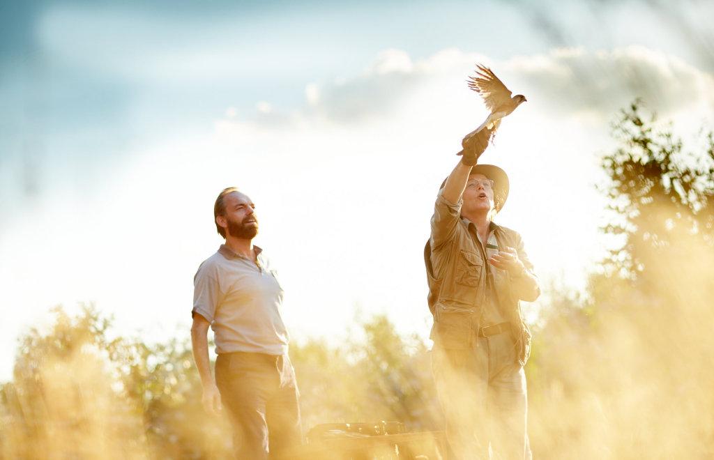 HEALING IMAGE |MATT (HUGO WEAVING) AND GLYNIS (JANE MENEHAUS) RELEASE A BIRD